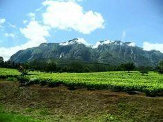 Mount Mulanje, Malawi <3 Mountains, Places, Nature, Travel, Naturaleza, Viajes, Destinations, Traveling, Trips