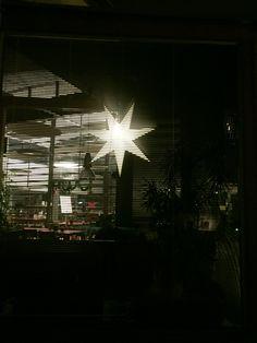 Joulun tähti Lintulassa