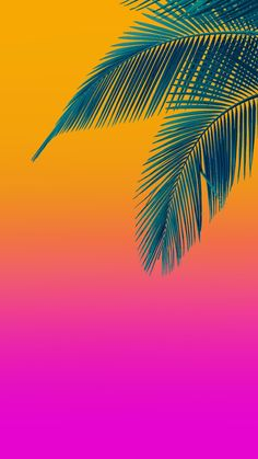 has beauty, but not everyone can see. –Confucius has beauty, but not everyone can see. Iphone Wallpaper Orange, Summer Wallpaper, Screen Wallpaper, Mobile Wallpaper, Phone Backgrounds, Wallpaper Backgrounds, Pineapple Backgrounds, Flamingo Party, Foto Art