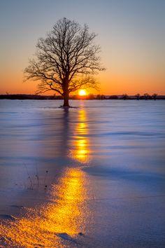 Follow the Sun by Marcel Vintan on 500px