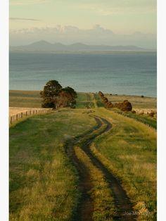 Spray Farm Lane Photographic Print by Joe Mortelliti
