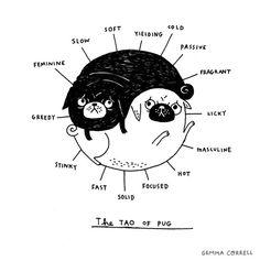 the tao of pug by gemma correll, via Flickr