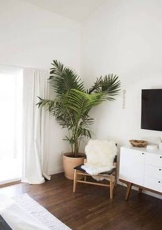 bedroom ideas plant and chair in a nook