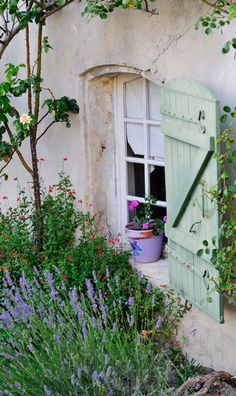 a purple pot perched on a sill - IT REALLY MAKES A STATEMENT, OUI !! - AS DO THE GORGEOUS SHUTTERS!
