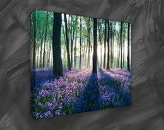 Photo can be printed on canvas to produce an attractive piece of art that will turn into the focus of any room in which it's hang. http://www.print2canvas.co.uk/canvas-art-store/Nature-Prints.php