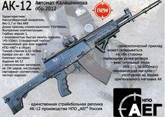 Update On The NPO AEG AK-12 AEG