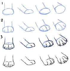 How to Draw Cat Paws