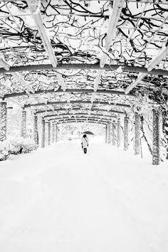 WALK by itohton