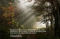 2 Peter 3:18 Beautiful Mind Quotes, Buddhist Wisdom, Jesus Loves Us, Grow In Grace, Pathways, Nature Photos, Waterfall, Scenery, Country Roads