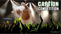 Don't forget to enter our Caption Competition to be in with a chance of winning this @Tanglewood Guitars Electro Acoustic.  Tweet, Facebook, G+ or E-Mail your entries across.  Hurry though, competition closes midnight 09/11/14.  GOOD LUCK!  #Competition #Win #Tanglewood #TanglewoodElectroAcoustic