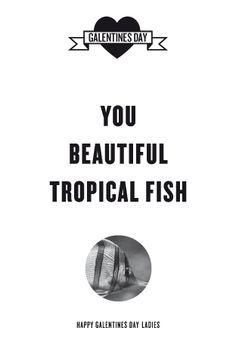 Ann, you beautiful tropical fish...
