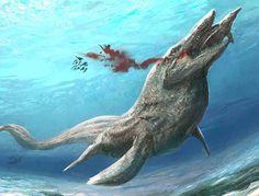 Tylosaurus, Late Cretaceous (88-80.5 Ma), Squamata (tylosaurinae); Describe by Marsh, 1872