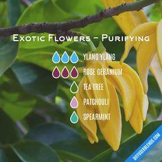 Blend Recipe: 3 drops Ylang Ylang, 3 drops Rose Geranium, 1 drop Tea Tree, 1 drop Patchouli, 1 drop Spearmint
