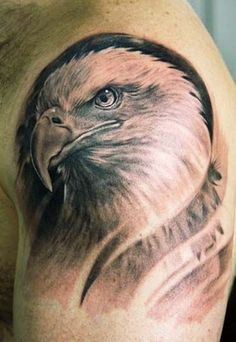 Eagle Tattoos Design On Shoulder