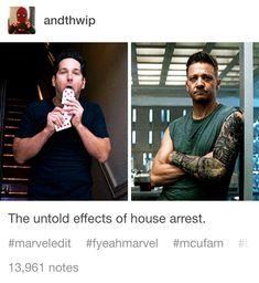The Untold effects of house arrest. Ant-Man and Hawkeye The Avengers, Avengers Memes, Marvel Memes, Marvel Funny, Marvel Dc Comics, Hulk, Dc Memes, Funny Memes, My Guy