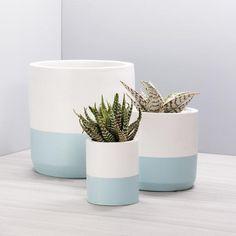 Concrete Plant Pots, Painted Plant Pots, Indoor Plant Pots, Painted Flower Pots, Indoor Planters, Diy Planters, Cement Planters, Suculentas Diy, Pottery Painting Designs