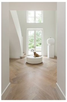 Wood Floor Design, Wood Interior Design, Interior And Exterior, Parquet Flooring, Wooden Flooring, White Wood Floors, White Walls, Neutral Walls, Herringbone Wood Floor