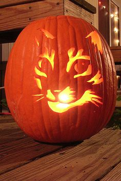 13 Cat Pumpkin-Carving Ideas for Halloween | Catster (For fellow cat freaks like me!)