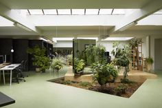 Random Studios in Amsterdam uses a lot of greenery inside their workspace. They say the plants allow nature to be present and makes work feel less like work.