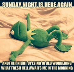 Funny Memes Pictures - Enjoy the Best Collection Ever - Funny - Humor bilder 9gag Funny, Funny Kermit Memes, Haha Funny, Funny Jokes, Hilarious, Funny Stuff, Funniest Memes, Week End Quotes, Work Quotes