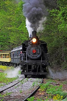 Model Railroading - The Mistakes You Need To Avoid - Model Train Buzz Train Art, By Train, Train Tracks, Train Rides, Old Steam Train, Train Engines, Old Trains, Train Pictures, Steam Engine