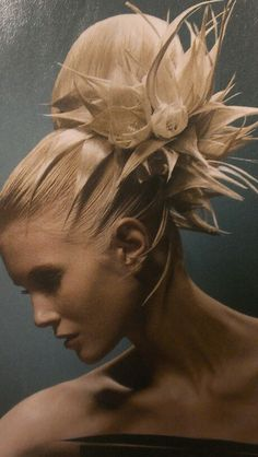 So technical and yet so feminine...this is the type of updo that wins NAHA competitions...