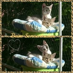 Sonne#Sisters#