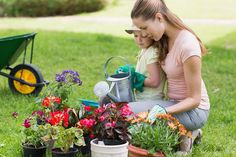 Nudí vás plastové květináče? Nevěřili byste, jak snadno je můžete vyměnit za betonové originály