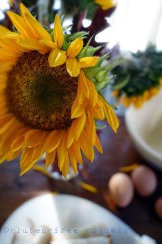 Cooking & Baking Gluten-Free: Tips from Karina | Gluten-Free Goddess® | Bloglovin'