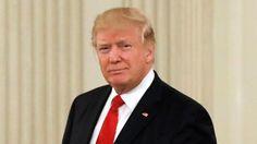 Trump hits MSNBC for 'FAKE NEWS' after tax return report #LallaGatta via @LallaGatta