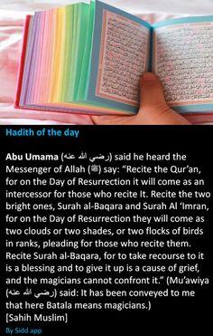 Hadith Quotes, Muslim Quotes, Quran Quotes, Religious Quotes, Wisdom Quotes, Quotes Quotes, Qoutes, Motivational Quotes, Life Quotes