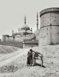 The Masjid of Muhammed Ali Pasha: Cairo, Egypt 1900-1920.                                                                                                                                                                                 More
