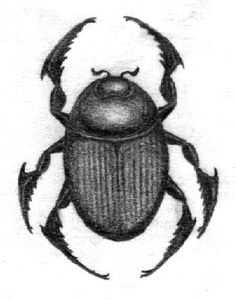 Just a #sketch of a #tattoo I would like to have one day. #Heartscarab would be really good for me, I think