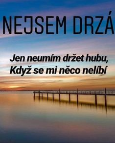 Nejsem drzá :))) Secret Love, Self Development, Motto, Words Quotes, Sarcasm, Quotations, Dreaming Of You, Psychology, Comedy