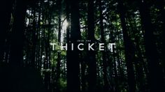 Into The Thicket by Sitka.