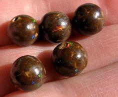 5 Australian Queensland Boulder Matrix Gem Opal Focal / Loose Big Beads 10mm  #Ourbrand #Focal