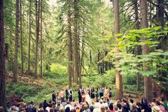 A small clearing in the middle of the forest is the perfect spot for a casual ceremony.