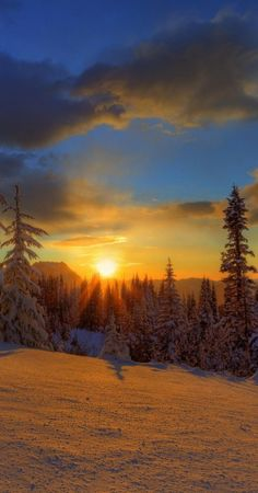 Mt. Rainier sunset, Washington