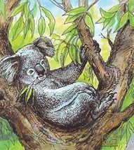 15. В детстве я зачитывалась книгами о животных. Одна из любимых - книга Лесли Рииса про коалу Ушастика. Впрочем, я и сейчас про животных с удовольствием почитаю.