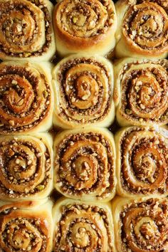 Baklava Cinnamon Rolls by The Candid Appetite.