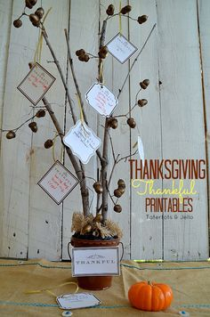 thanksgiving Thankful Printables and tree idea for centerpiece or November activity with your kids. #printables #kidideas #gratitude