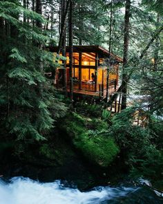 Tree house interior, modern cabins, tiny house cabin, cabin homes, tiny Tiny House Cabin, Tiny House Plans, Cabin Homes, Haus Am See, Building A Cabin, Tree House Designs, Cabin In The Woods, Forest House, Forest Cabin