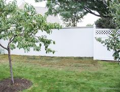 Dark Bambo Fencing Hiding Cinderblock New House Ideas - Cinder block wall fence ideas