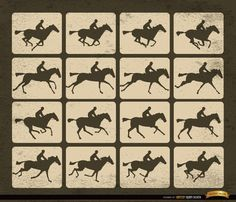 Horse racing silhouette motion frames. It's a nice vector background to use in promos related to horse racing sport like events, transmissions, etc. High quality JPG included. Under Commons 4.0. Attribution License.