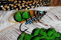 The beauty of Flies