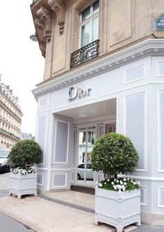 Love to live dior shop, store front design, store design, paris store, bout Paris France, Dior Paris, Dior Store, Shop Fronts, Front Design, Store Design, Belle Photo, The Places Youll Go, Interior Architecture