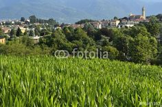 """Scarica l'immagine Royalty Free  """"Lurago, landscape"""" creata da federicocimino al miglior prezzo su Fotolia"""