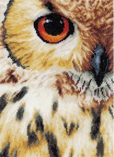 You can get up close and personal with the dynamic beauty of this owl. This Owls Eye cross stitch kit from Lanarte is a must have for any nature and a...