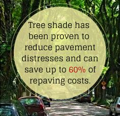 """Source: McPherson, Gregory, and Jules Muchnick. """"Effects of Street Tree Shade on Asphalt and Concrete Pavement Performance."""" Journal of Arboriculture 31.6 (2005): 303-10. Web ."""