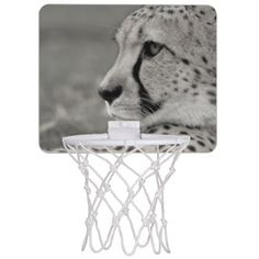 Mini Basketball Hoop. Photo Guepard. Mini Basketball Backboard - home decor design art diy cyo custom